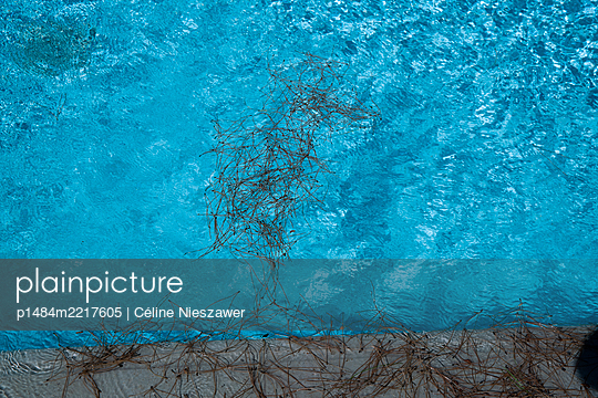 Dirty Pool - p1484m2217605 by Céline Nieszawer
