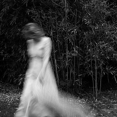 Bamboo - p1543m2116526 by Sophia Snadli