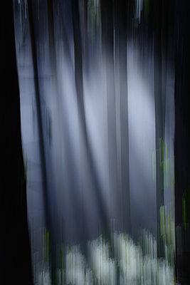 Nebelschwaden - p1659m2253863 von Somni Bergur