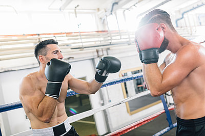 Two boxers fighting in boxing ring - p300m1191887 by Matthias Drobeck