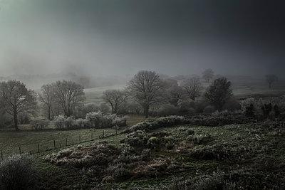 Winterlandschaft - p910m1195096 von Philippe Lesprit