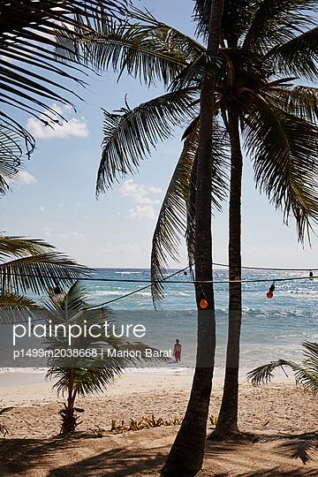 Palmenstrand Papaya Playa - p1499m2038668 von Marion Barat