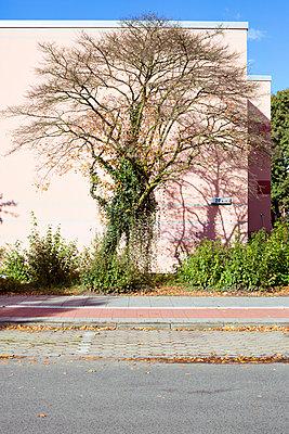 Rosa Hausfassade im Vorort - p432m1488321 von mia takahara