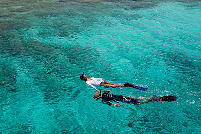 Snorkelers in the Caribbean Sea - p92412023f by Image Source