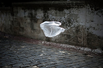 Flying bag - p1007m959832 by Tilby Vattard