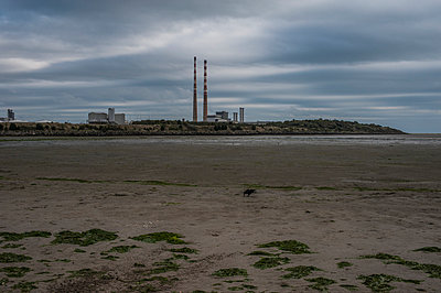 Poolbeg Generating Station, Dublin Bay - p1047m953667 by Sally Mundy