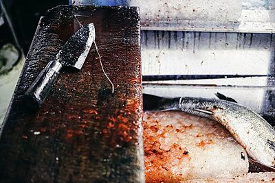Frischer Fisch beim Tsukiji Fischmarkt - p1180m965875 von chillagano