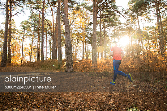 Man jogging in autumn forest at sunrise - p300m2243991 by Pete Muller