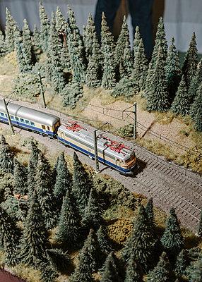 Model railway - p1085m2007813 by David Carreno Hansen