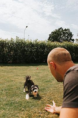 Summer Dog - p1507m2167925 by Emma Grann