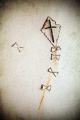 Burnt Paper Kite  - p1248m2179133 by miguel sobreira