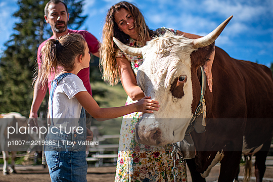 France, Mother and daughter strokes a cow - p1007m2219985 by Tilby Vattard