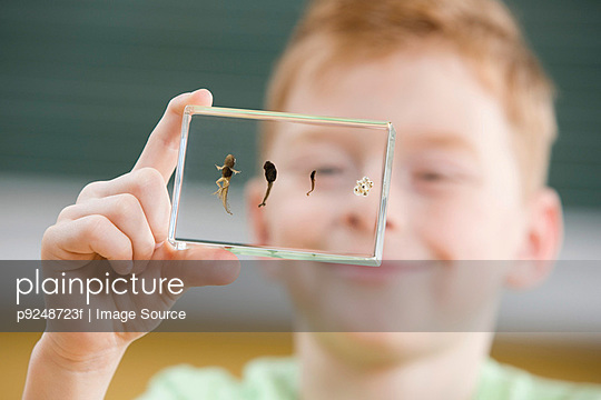 Boy with tadpole stages in glass - p9248723f by Image Source