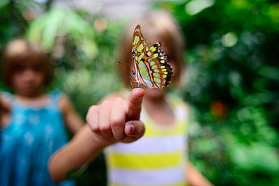 Butterfly on girl's finger at park - p1166m1474508 by Cavan Images