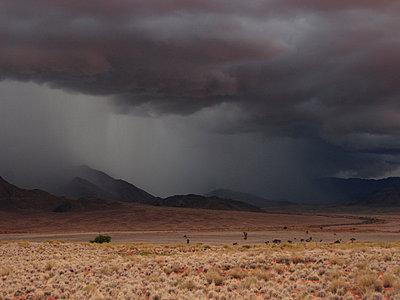 Namibia - p8870041 von Christian Kuhn