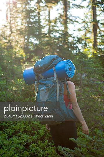 p343m1520932 von Taylor Zann