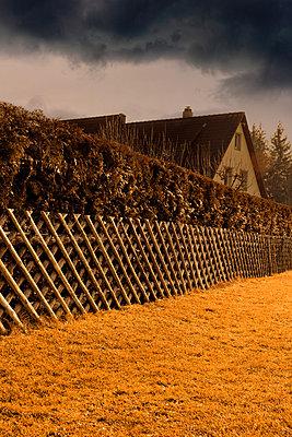 Jägerzaun  vor Thujahecke - p248m880981 von BY