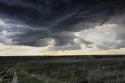 p429m1054172 von Jason Persoff Stormdoctor