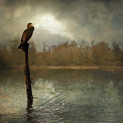 Of Rising Rivers (V) - p1633m2209024 by Bernd Webler
