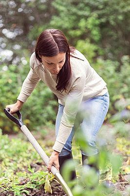 Mid adult woman working in organic farm - p426m1003605f by Maskot