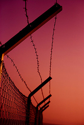 Barbed wire fence - p2480369 by BY