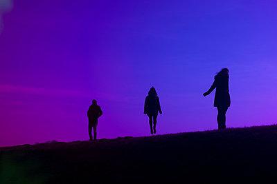 Purple - p1220m1039814 by Schall & Schnabel
