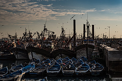 Fishing harbour of Essouira - p1243m1516478 by Archer