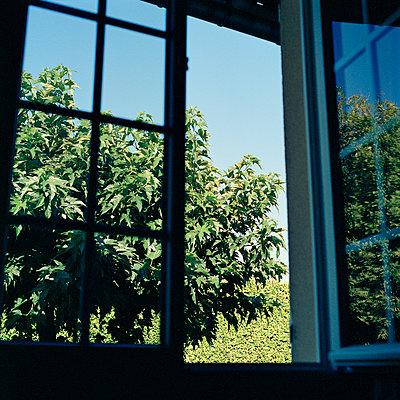 Offenes Fenster - p1499m2019928 von Marion Barat