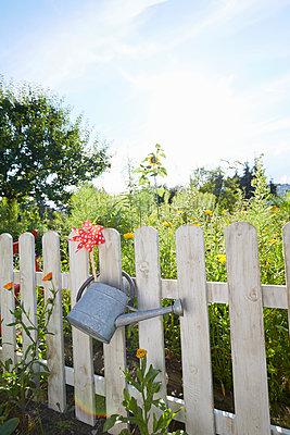 Gartenzaun und Gießkanne - p464m1496624 von Elektrons 08