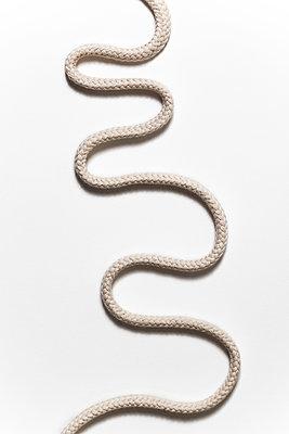 Schlangenlinien - p647m1119977 von Tine Butter