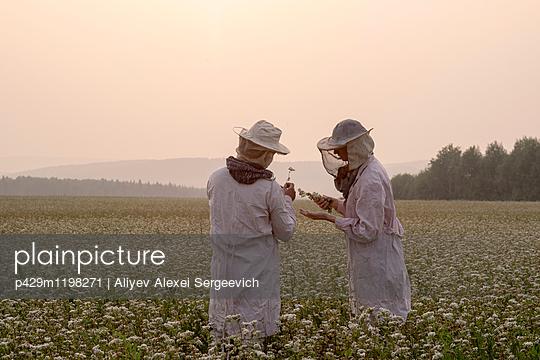 p429m1198271 von Aliyev Alexei Sergeevich