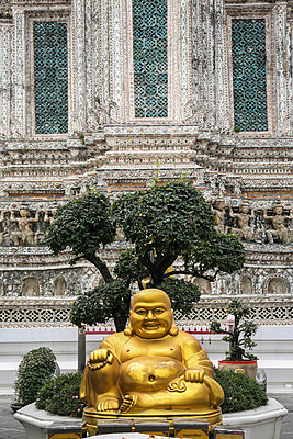 Lucky-Buddha - p375m1021416 by whatapicture