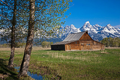 USA, Wyoming, Mormone Barn, in background Treton mountains - p3008753f by Fotofeeling