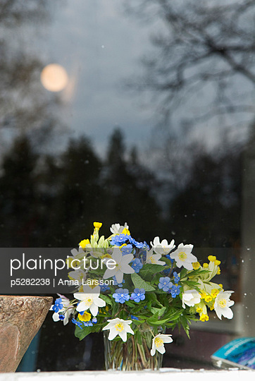 Flowers in vase in front of glass window