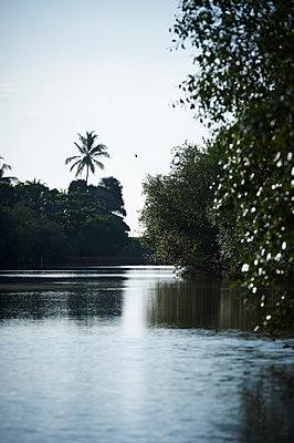 Am Fluss in Tangalle - p1259m1109527 von J.-P. Westermann