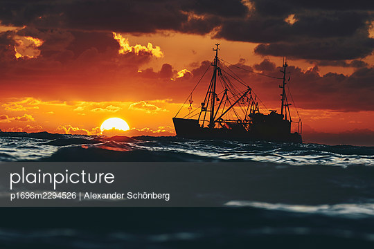 Trawler on the sea - p1696m2294526 by Alexander Schönberg