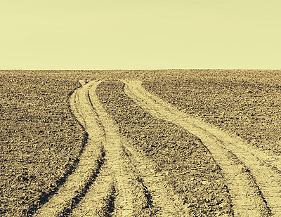 Fresh tire tracks on farmland, near Pullman - p1100m876925f by Paul Edmondson