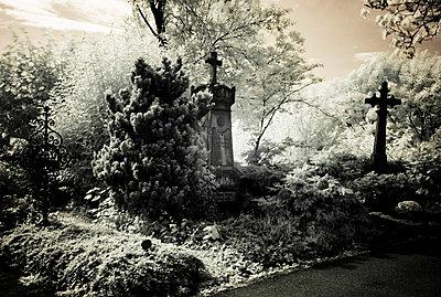Friedhof - p9793391 von Hoschek