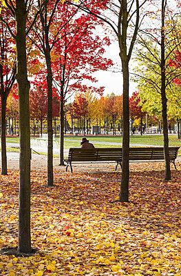 Herbstfarben - p1222m1104835 von Jérome Gerull