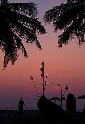 Sonnenuntergang unter Palmen - p1356m1525280 von Markus Rauchenwald