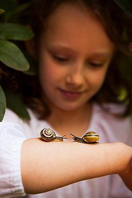 zwei Schnecken lernen sich auf dem Arm kennen - p045m1461182 von Jasmin Sander