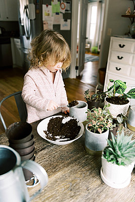 Toddler girl helping with re-potting plants and propagation. - p1166m2152340 by Cavan Images