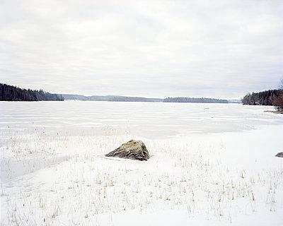 Rock at frozen lake - p312m1113945f by Nicho Sodling