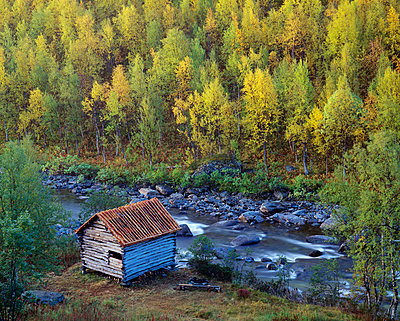 Log cabin by river in forest - p5751492f by Roine Magnusson