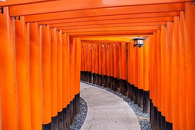 Shinto Schrein in Kyoto - p7980208 von Florian Loebermann