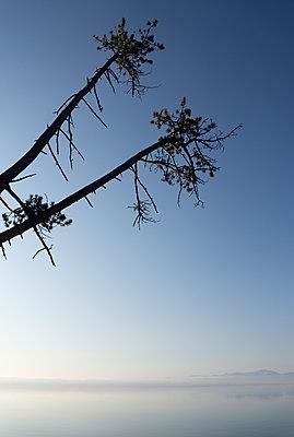 Morgendämmerung über dem Starnberger See - p1657m2272065 von Kornelia Rumberg