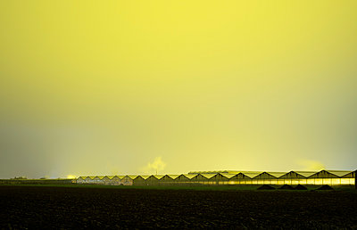 Greenhouses at night - p1132m955255 by Mischa Keijser