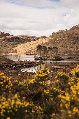 Loch Druim Suardalain - p1477m2038965 by rainandsalt