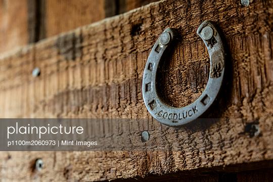 p1100m2060973 von Mint Images
