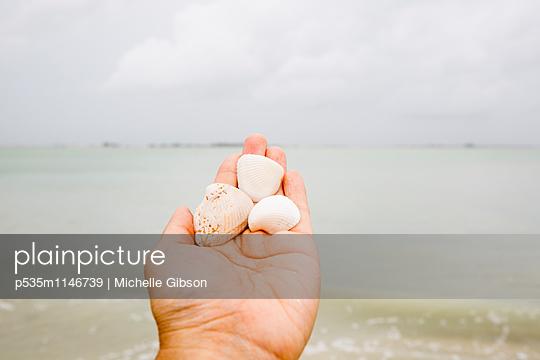 p535m1146739 von Michelle Gibson